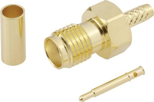 SMA-Reverse-Steckverbinder Buchse, gerade 50 Ω BKL Electronic 0419023 1 St.