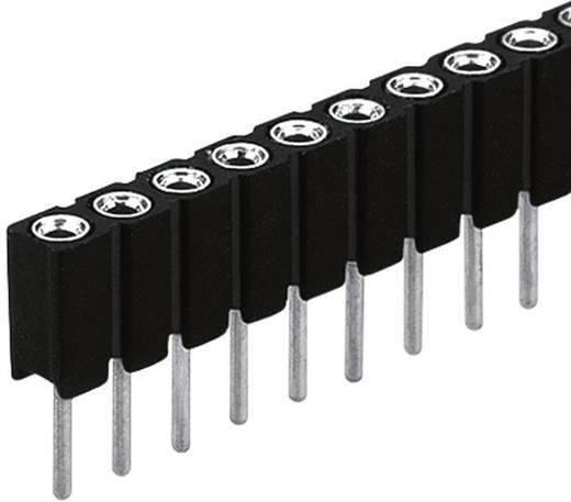 Buchsenleiste BLY 1/ 50 Fischer Elektronik Inhalt: 1 St.