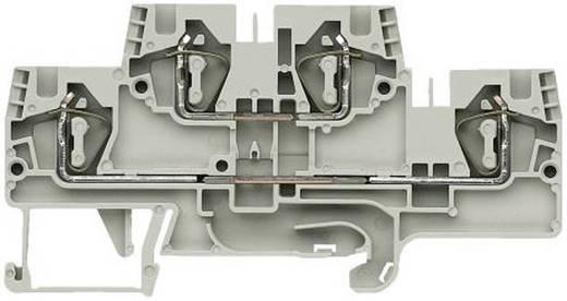 Etagenklemme fasis WKFN 4 E/N/D/35 gris Wieland Grau Inhalt: 1 St.