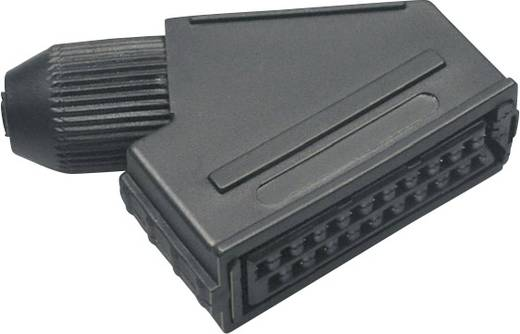Scart-Steckverbinder Buchse, gewinkelt Polzahl: 21 Schwarz BKL Electronic 903014 1 St.