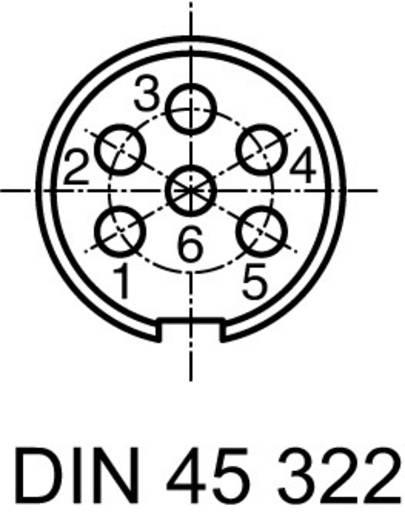 Rundsteckverbinder C091/D Pole: 6 DIN Kabelstecker 5 A C091 31H006 100 2 Amphenol 1 St.