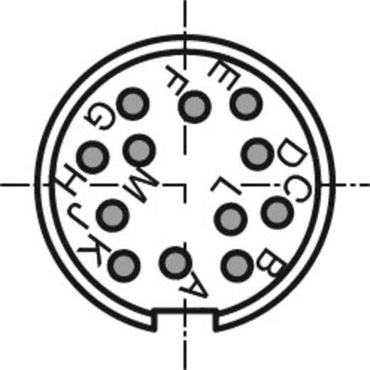 Rundsteckverbinder C091/D Pole: 12 Kabelstecker 3 A C091 31H012 200 2 Amphenol 1 St.