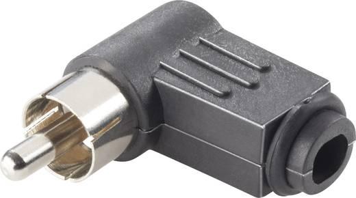Cinch-Steckverbinder Stecker, gewinkelt Polzahl: 2 Schwarz Conrad Components 4 St.