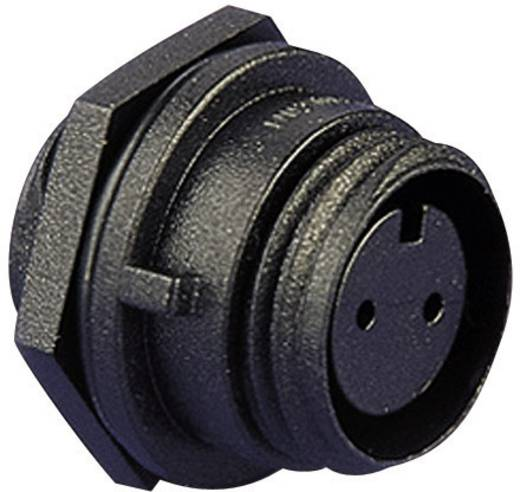 Leitungssteckverbinder, Frontplattenmontage Pole: 3 Stecker 8 A PX0412/03S Bulgin 1 St.