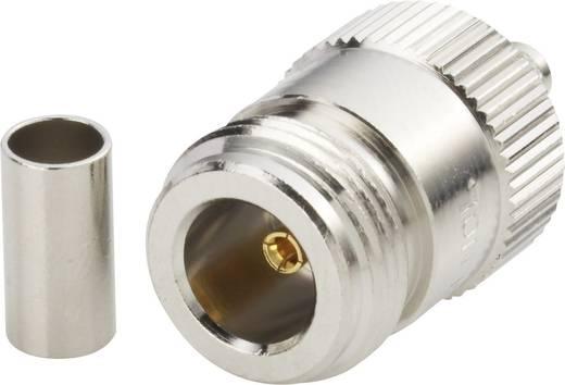 N-Steckverbinder Buchse, gerade 50 Ω Amphenol N6121A1-NT3G-1-50 1 St.