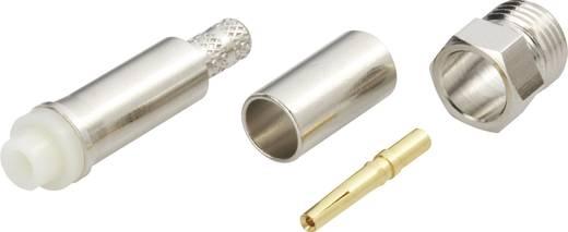 FME-Steckverbinder Buchse, gerade 50 Ω Amphenol FME6121B1-ND3G-1-50 1 St.