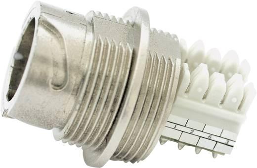 RJ45-Einbaugehäuse-Set - Schneidklemm Version Pole: 8P8C 17-10022 Conec Inhalt: 1 St.