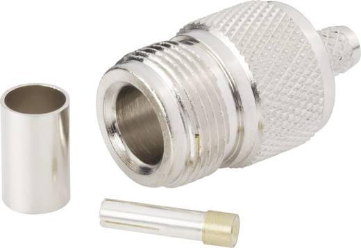 N-Steckverbinder Buchse, gerade 50 Ω BKL Electronic 404076 1 St.