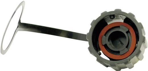 RJ45 Zubehör - Schutzkappe Kunststoff 17-10002 Conec Inhalt: 1 St.