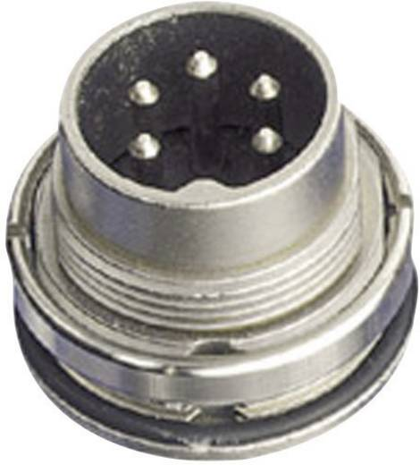 Rundsteckverbinder C091/D Pole: 4 DIN Gerätestecker 5 A C091 31W004 100 2 Amphenol 1 St.