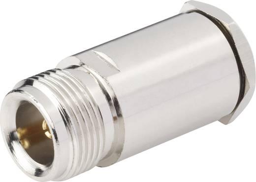 N-Steckverbinder Buchse, gerade 50 Ω BKL Electronic 0404082 1 St.