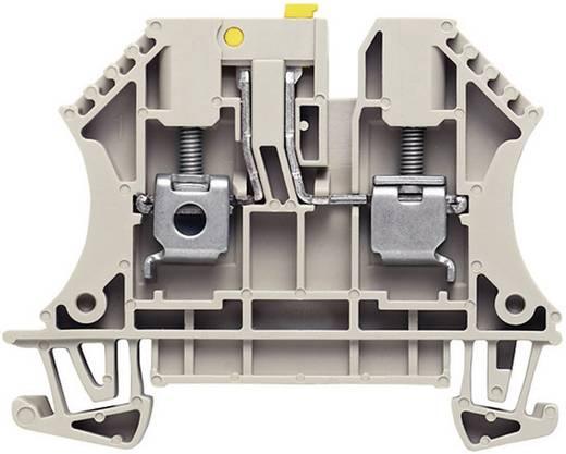 Trenn-Reihenklemmen WTR 4 7910180000 Grau Weidmüller 1 St.