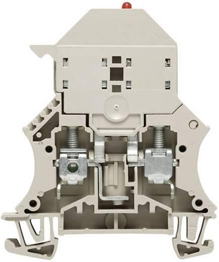 Sicherungs-Reihenklemmen WSI 6/LD 250AC 1012400000 Grau Weidmüller 1 St.