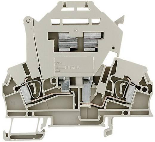 Sicherungs-Reihenklemmen - ZSI beige G20 ZSI 2.5/LD 250AC 1616410000 Beige Weidmüller 1 St.