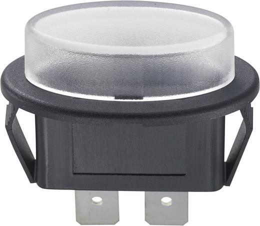 KFZ-Sicherungshalter Passend für Flachsicherung Standard 30 A 24 V/DC SCI 1 St.