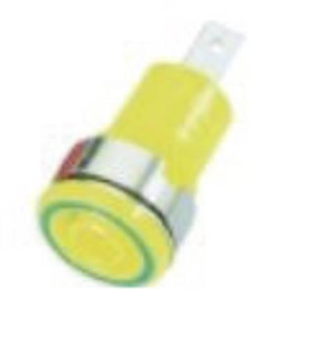 Sicherheits-Laborbuchse Buchse, Einbau vertikal Stift-Ø: 4 mm Grün-Gelb MultiContact SLB 4-F6,3 1 St.