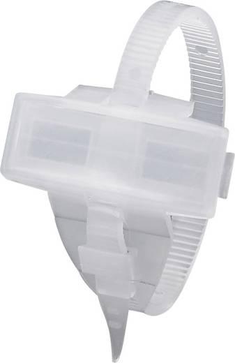 Zeichenträger mit Kabelbinder Montageart: Kabelbinder Beschriftungsfläche: 29 x 8 mm Passend für Serie Einzeldrähte, Universaleinsatz Transparent Phoenix Contact KMK 1005208 1 St.