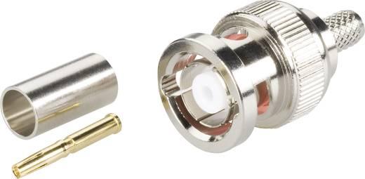 BNC-Reverse-Steckverbinder Stecker, gerade 50 Ω BKL Electronic 0419602 1 St.