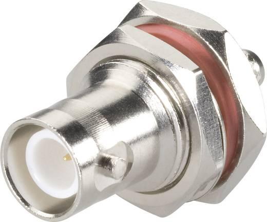 BNC-Reverse-Steckverbinder Buchse, Einbau vertikal 50 Ω BKL Electronic 0419610 1 St.