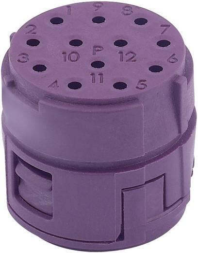 EPIC® CIRCON M23 Bucheneinsatz Inserts 12 pôles + contacts femelles à souder LappKabel Inhalt: 1 St.