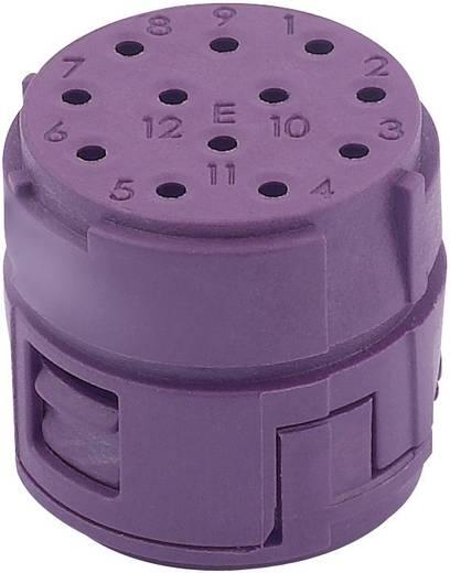 EPIC® CIRCON M23 Stifteinsatz Inserts 12 pôles, partie E + contacts mâles à souder LappKabel Inhalt: 1 St.