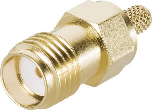 SMA-Steckverbinder Buchse, gerade 50 Ω Telegärtner J01151A0051 1 St.