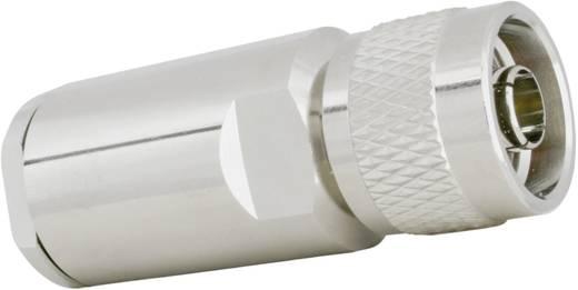 N-Steckverbinder Stecker, gerade 50 Ω SSB Ecoflex15 Plus 1 St.