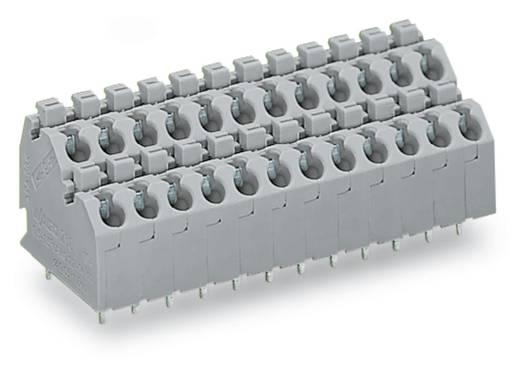 Doppelstockklemme 1.00 mm² Polzahl 8 250-704 WAGO Grau 132 St.