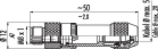 Sensor-/Aktor-Steckverbinder, unkonfektioniert M8 Stecker, gerade Polzahl: 4 Binder 99-3363-00-04 1 St.