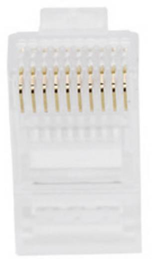 Modular-Stecker für Rundkabel Stecker, gerade Pole: 10P10C 1400-1000-06 Glasklar BEL Stewart Connectors 1400-1000-06 1