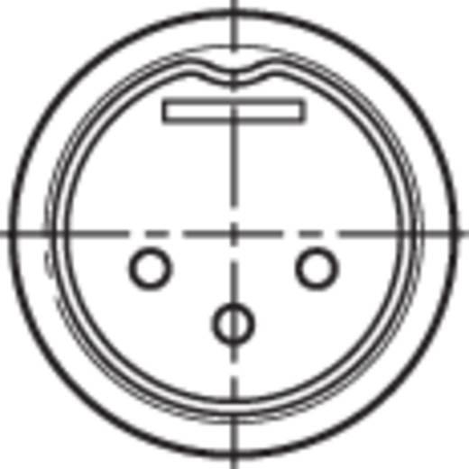 DIN-Rundsteckverbinder Stecker, gerade Polzahl: 3 Schwarz Rean NYS321G 1 St.