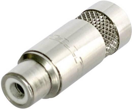 Cinch-Steckverbinder Buchse, gerade Polzahl: 2 Silber Neutrik NYS372-P 1 St.