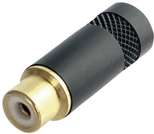 Cinch-Steckverbinder Buchse, gerade Polzahl: 2 Schwarz Neutrik NYS372-P-BG 1 St.