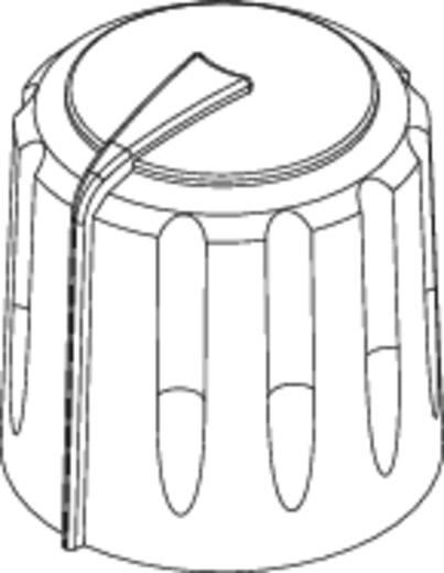 Drehknopf Schwarz/Rot (Ø x H) 17 mm x 17.75 mm Rean F 317 S 092 1 St.