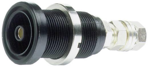 Sicherheits-Einbaustecker ID/S6AR-N-B4S Pole: 1 Mit Arretierung 14.0034-20 Stäubli 1 St.