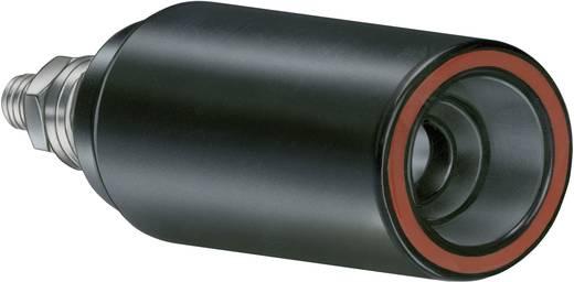 Sicherheits-Aufbaubuchse AB6AR-S/12,4 Pole: 1 Ohne Arretierung 14.0029-24 Stäubli 1 St.