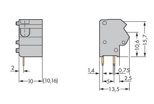 Federkraftklemmblock Polzahl 1 254-822 WAGO Dunkel-Grau 300 St.