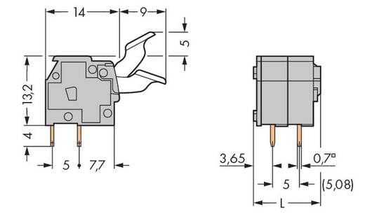 Federkraftklemmblock 2.50 mm² Polzahl 2 255-402/333-009/999-950 WAGO Licht-Grau 400 St.