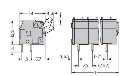 Federkraftklemmblock 2.50 mm² Polzahl 7 WAGO Licht-Grau 80 St.