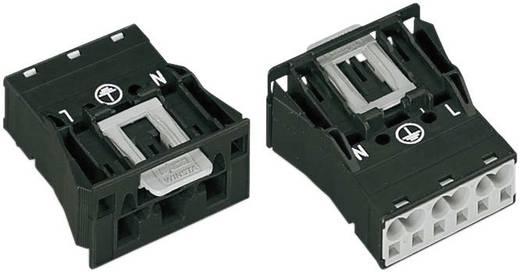 Netz-Steckverbinder Serie (Netzsteckverbinder) WINSTA MIDI Stecker, gerade Gesamtpolzahl: 2 + PE 25 A Schwarz WAGO 1 S