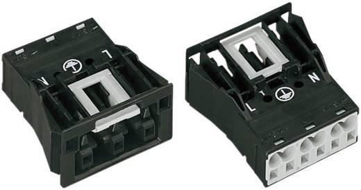 Netz-Steckverbinder Serie (Netzsteckverbinder) WINSTA MIDI Buchse, gerade Gesamtpolzahl: 2 + PE 25 A Schwarz WAGO 1 St.