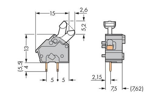 Federkraftklemmblock 2.50 mm² Polzahl 1 WAGO Lichtgrau 400 St.