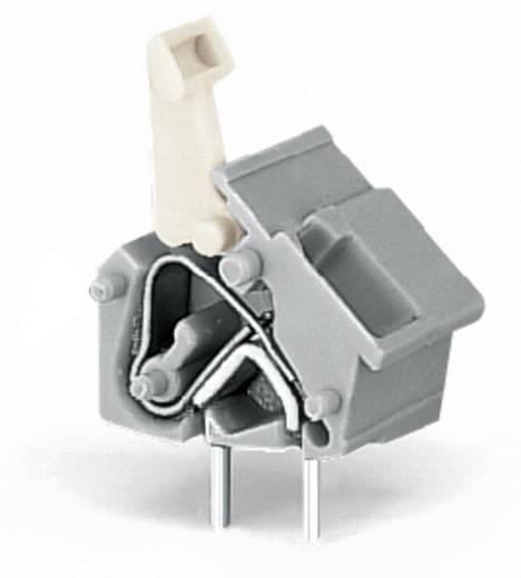 Federkraftklemmblock 2.50 mm² Polzahl 1 256-763 WAGO Lichtgrau 300 St.