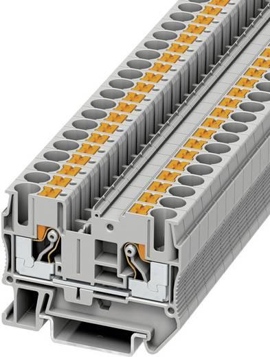 Push-In Durchgangsklemmen PT PT 6 Phoenix Contact Grau Inhalt: 1 St.