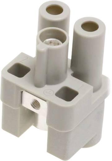 Stifteinsatz Han® Q 09 12 002 2651 Harting 2 + PE Axialschraubanschluss 1 St.
