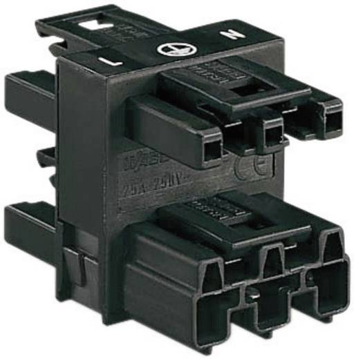 Netz-Verteiler Netz-Stecker - Netz-Buchse, Netz-Buchse, Netz-Buchse Gesamtpolzahl: 2 + PE Schwarz WAGO 770-607 1 St.