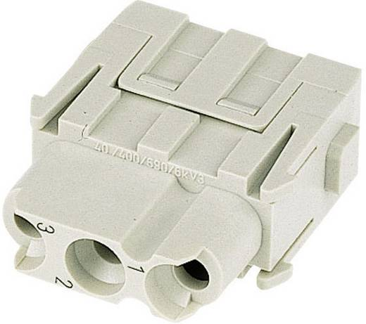 Buchseneinsatz Han® C-Modul 09 14 003 3102 Harting 3 + PE Crimpen 1 St.
