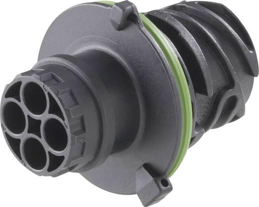 Rundstecker Stecker, gerade Serie (Rundsteckverbinder) DIN 72585 Gesamtpolzahl 7 1718230-1 TE Connectivity