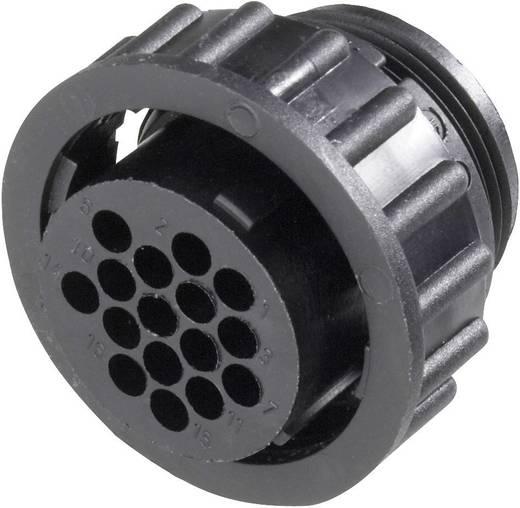 CPC Buchsengehäuse mit Überwurfmutter Pole: 16 182642-1 TE Connectivity 1 St.
