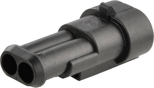 Stiftgehäuse-Kabel AMP-Superseal 1.5mm Series Polzahl Gesamt 2 TE Connectivity 282104-1 Rastermaß: 6 mm 1 St.